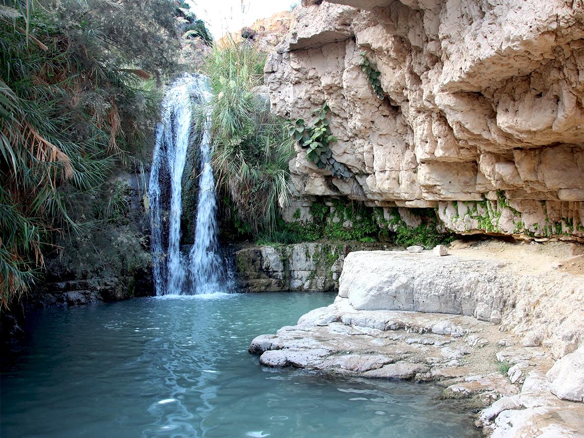 Ein Gedi, el oasis del bálsamosagrado